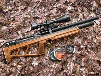 Пневматическое оружие: устройство, сфера применения, законодательная база